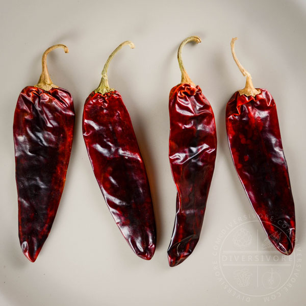 Four guajillo chilies lined up on a tan background