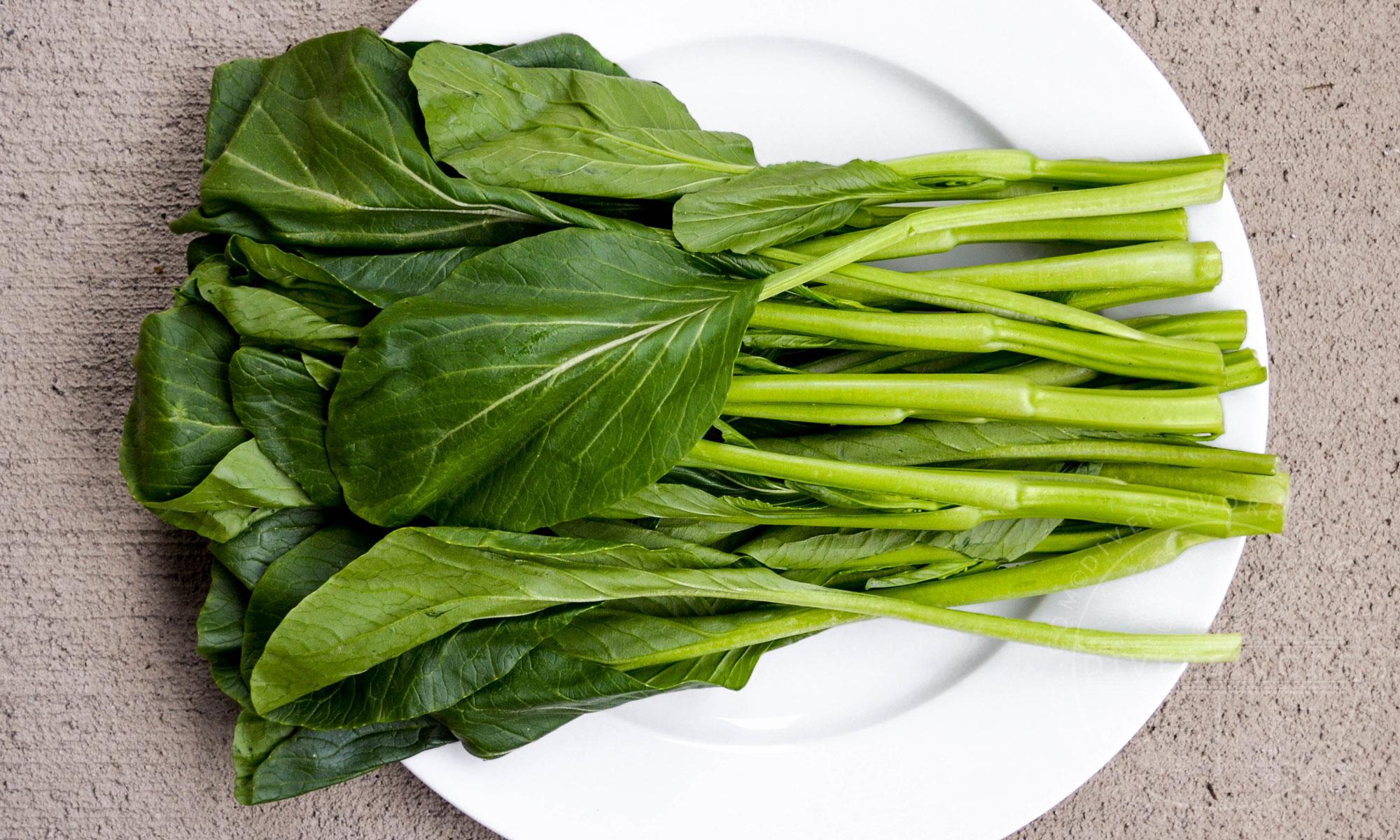 Choy Sum (Yu Choy) stems on a white plate - Diversivore.com