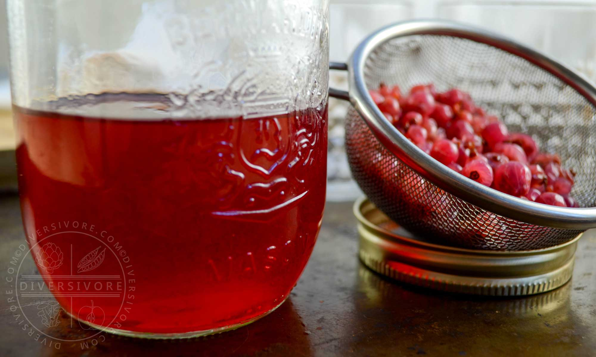 Red currant gin in a mason jar, shown beside a mesh strainer filled with leftover currants